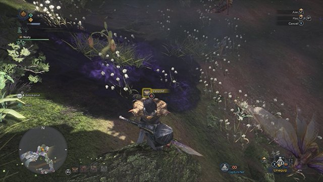 How to Carve Insects In Monster Hunter World