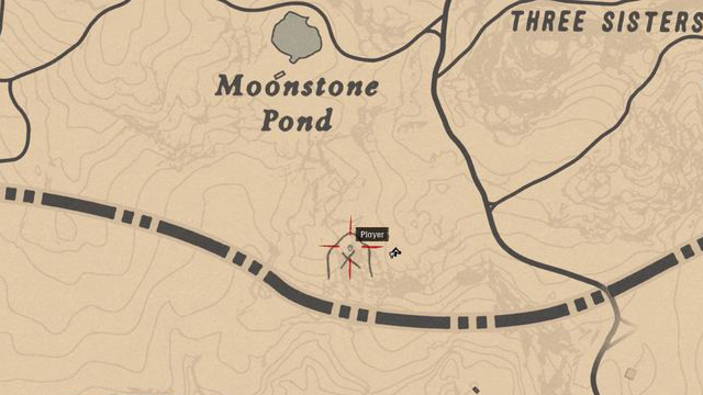 Red Dead Redemption 2 Rock Carvings - Location 5