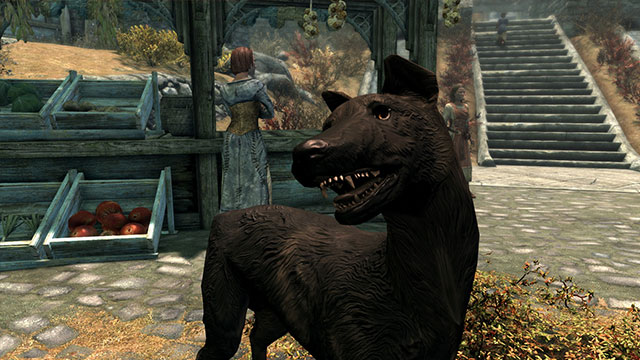Skyrim mod immortalizes creator's beloved dog who passed away