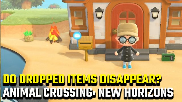 Animal Crossing: New Horizons Dropped Items