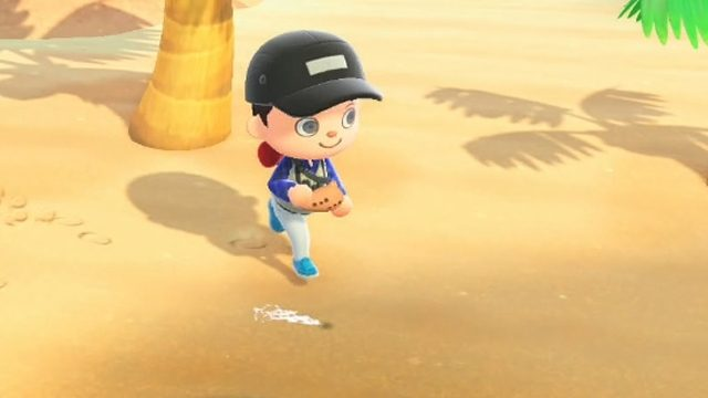 How to get manila clams in Animal Crossing: New Horizons