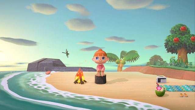how to store items in Animal Crossing: New Horizons