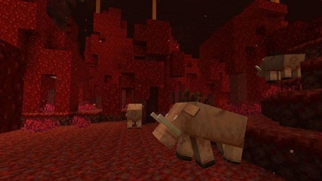 Minecraft The Nether Survival