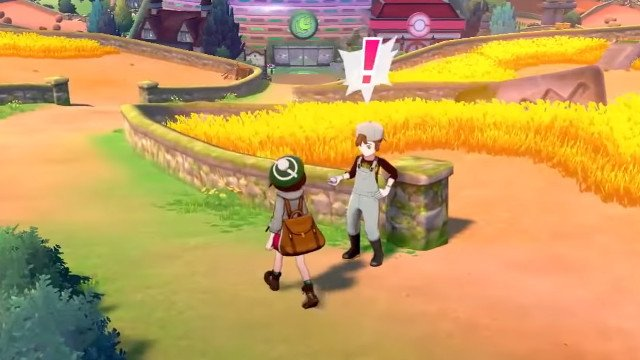 Pokemon Sword and Shield cheaters