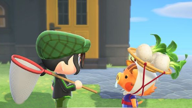 When do turnip prices change in Animal Crossing: New Horizons Daisy Mae