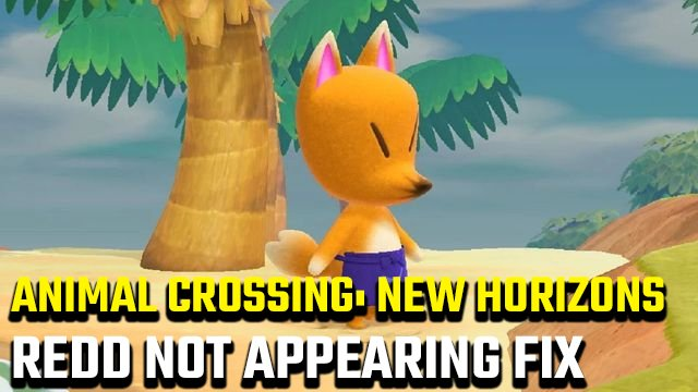 Animal Crossing: New Horizons Redd Not Showing Up Fix