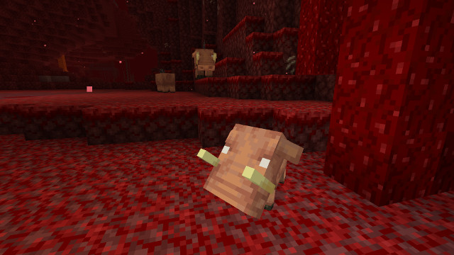 How to tame a Hoglin in Minecraft baby Hoglin