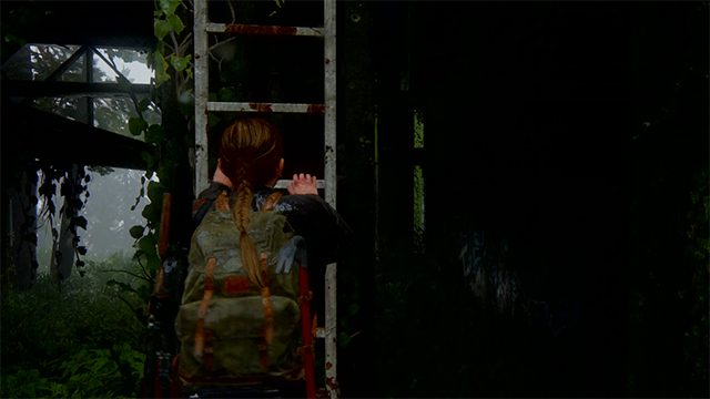 The Last of Us 2 Coin Locations | Seattle Day 3 | The Island | Idaho