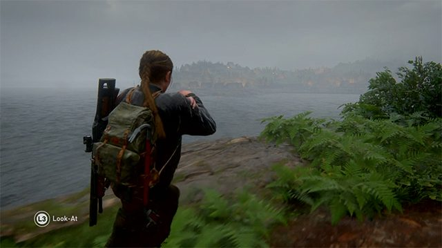 The Last of Us 2 Coin Locations | Seattle Day 3 |The Island | North Carolina