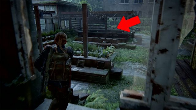 The Last of Us 2 Coin Locations | Seattle Day 2 |The Descent | Rhode Island