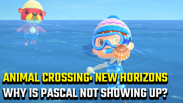 ANIMAL CROSSING NEW HORIZONS WHY IS PASCAL NOT SHOWING UP