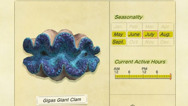 animal crossing new horizons how to catch gigas giant clam time month