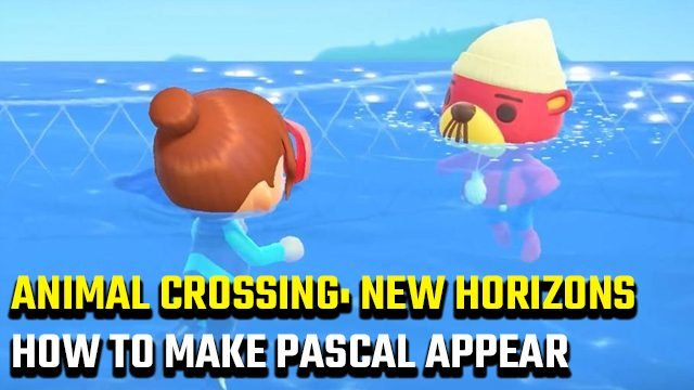 animal crossing new horizons how to make pascal appear