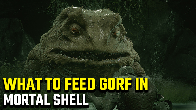 What to feed Gorf in Mortal Shell to get shaders