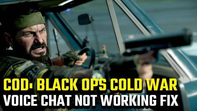 Black Ops Cold War voice chat not working fix