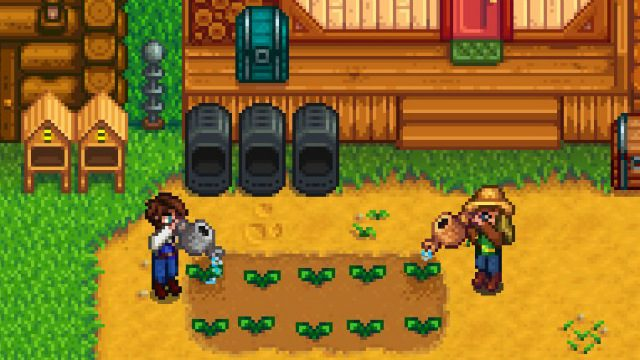 How to get a Banana Tree in Stardew Valley