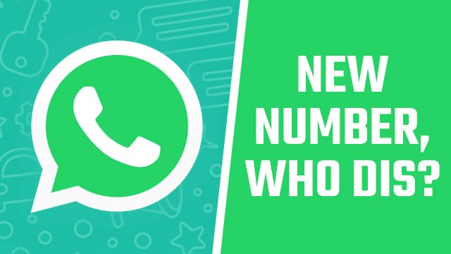 Does WhatsApp give you a phone number