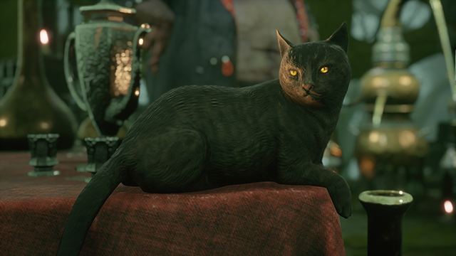 The Mortal Shell PS5 upgrade's best feature is a loud, purring cat