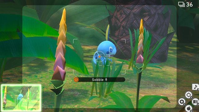new pokemon snap how to complete in the tall grass