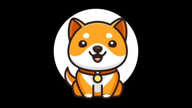 Where to buy Baby Doge