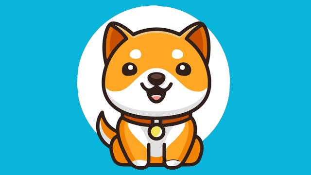 Baby Doge Coin Price Prediction 2021
