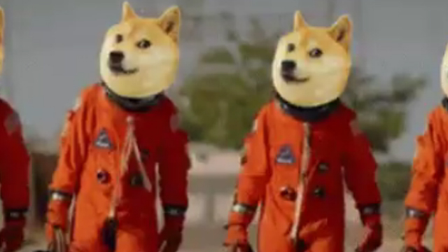 should i buy dogecoin going down