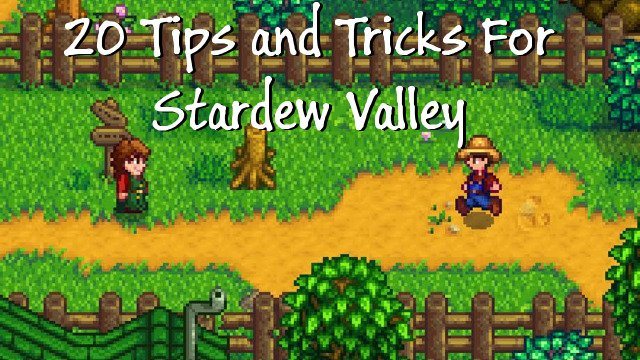 20 Tips and Tricks For Stardew Valley