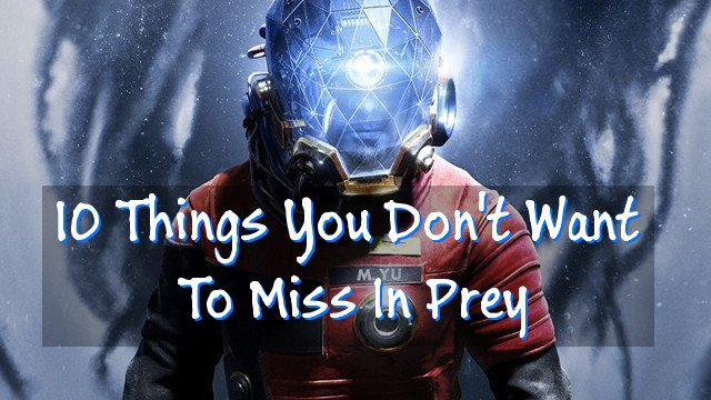 10 Things You Don\'t Want To Miss In Prey